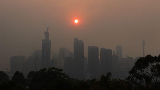"""Smog spowija Sydney. """"Dym i pył są wszędzie"""""""