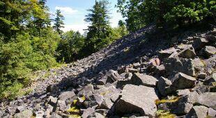 Naukowcy dokonali ponownych obliczeń wysokości wierzchołków Łysicy (wideo bez dźwięku)