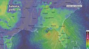 Prognozowane porywy wiatru w burzy Nestor